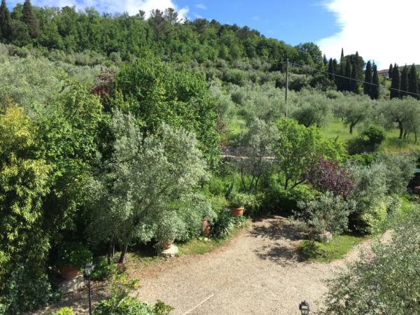 Villa Nobili view